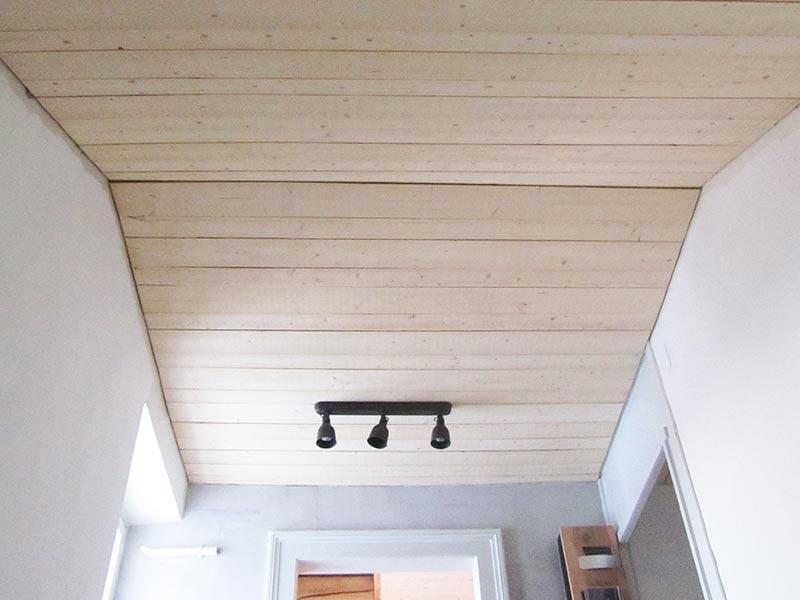 Remarquable plafond-lames-gros-bois | Charpente de la Birse Sàrl HW-57